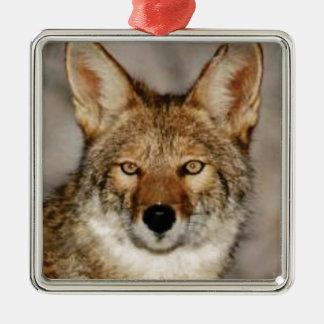 Ornement Carré Argenté de coyote fin