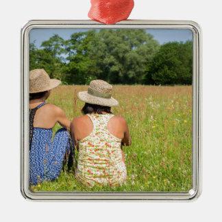Ornement Carré Argenté Deux amis s'asseyant ensemble dans meadow.JPG