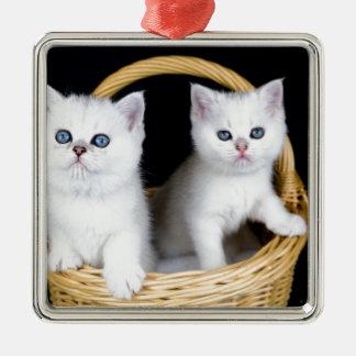 Ornement Carré Argenté Deux chatons blancs dans le panier sur