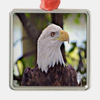 Ornement Carré Argenté Eagle chauve