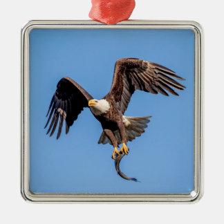 Ornement Carré Argenté Eagle chauve avec un poisson