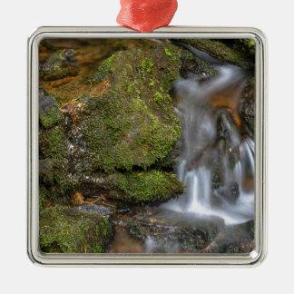 Ornement Carré Argenté Écoulement d'eau vert et moussu