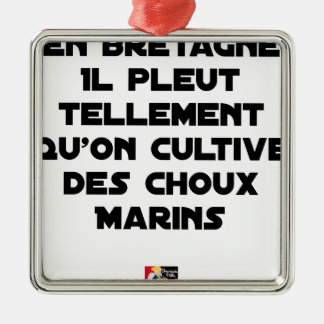 ORNEMENT CARRÉ ARGENTÉ EN BRETAGNE, IL PLEUT TELLEMENT QU'ON CULTIVE DES