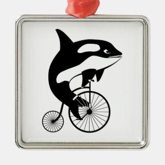 Ornement Carré Argenté Épaulard, orque montant un vélo