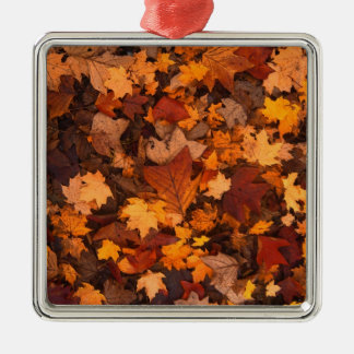 Ornement Carré Argenté feuillage d'automne