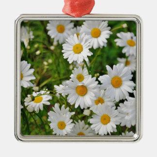 Ornement Carré Argenté Fleur de marguerite blanche