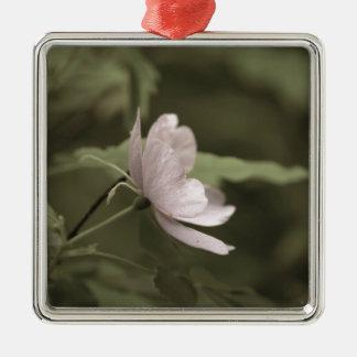 Ornement Carré Argenté fleur pourpre aged8 de fleurs