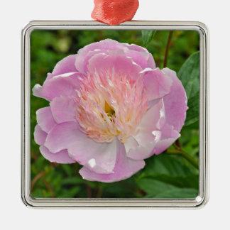 Ornement Carré Argenté Fleur rose de pivoine