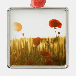 Ornement Carré Argenté Fleur rouge près de la fleur blanche pendant la
