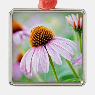 Ornement Carré Argenté Fleur sauvage coloré d'echinacée