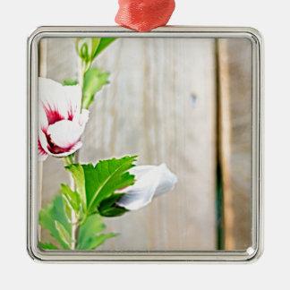 Ornement Carré Argenté Fleur simple