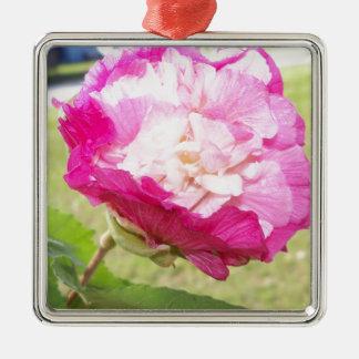 Ornement Carré Argenté fleur variable de rose et blanche de ketmie