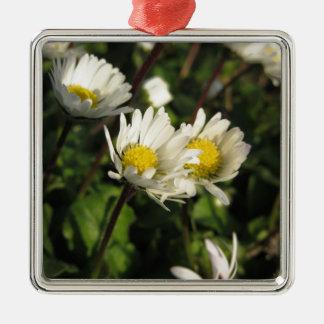 Ornement Carré Argenté Fleurs de marguerite blanche sur l'arrière - plan