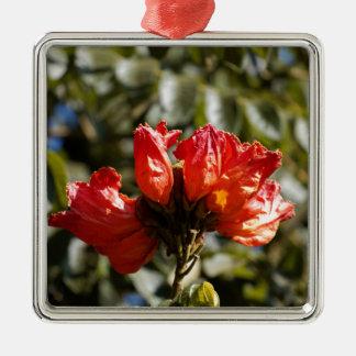 Ornement Carré Argenté Fleurs d'un tuliptree africain