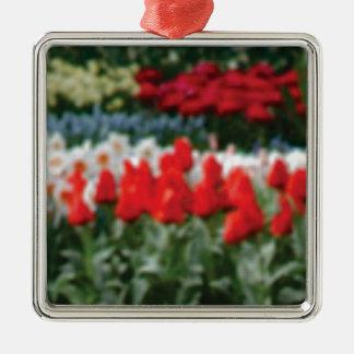 Ornement Carré Argenté fleurs rouges de gloire