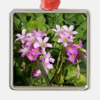Ornement Carré Argenté Fleurs sauvages roses sensibles de ressort