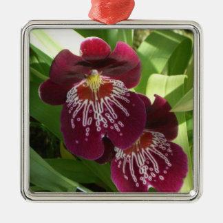 Ornement Carré Argenté Floral élégant des orchidées II marron