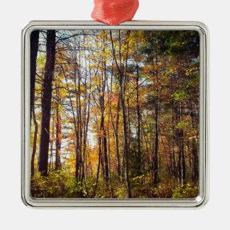 Ornement Carré Argenté Forêt d'automne du New Hampshire