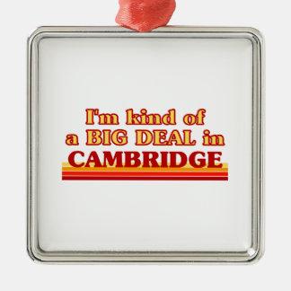 Ornement Carré Argenté Genre d'I´m d'affaire à Cambridge