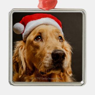Ornement Carré Argenté Golden retriever posant pour son Noël