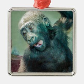 Ornement Carré Argenté Gorille de bébé