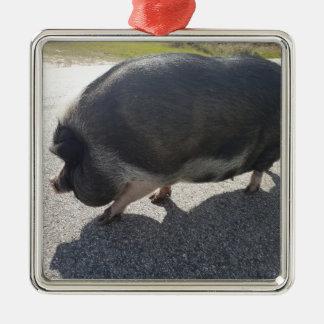 Ornement Carré Argenté Grand porc