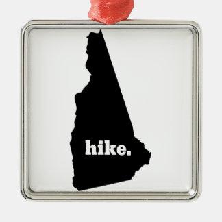 Ornement Carré Argenté Hausse New Hampshire