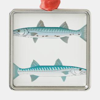 Ornement Carré Argenté Illustration de barracuda