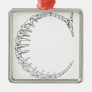 Ornement Carré Argenté Initiale d'os de la lettre C