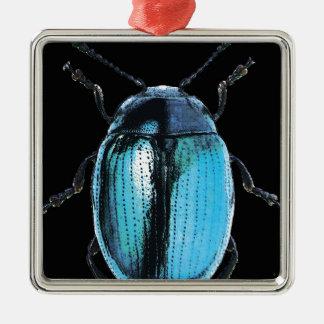 Ornement Carré Argenté insecte bleu trash black fond
