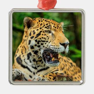 Ornement Carré Argenté Jaguar montre ses dents, Belize