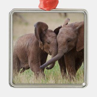 Ornement Carré Argenté Jeune jeu d'éléphants africains