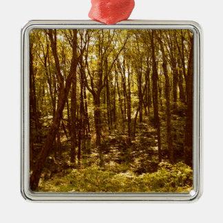 Ornement Carré Argenté La forêt montre du doigt