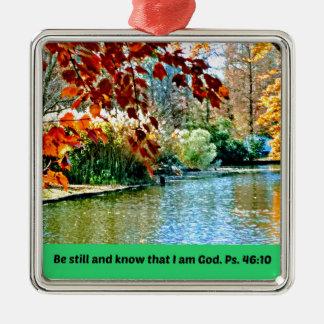 Ornement Carré Argenté Le 46:10 de psaume soit toujours et sait que je