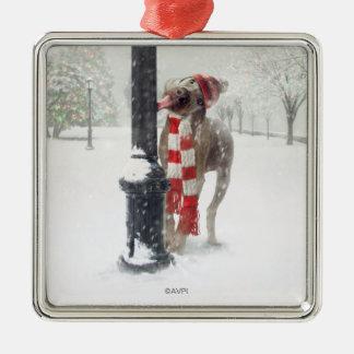 Ornement Carré Argenté Le chien drôle de Noël lèche Polonais