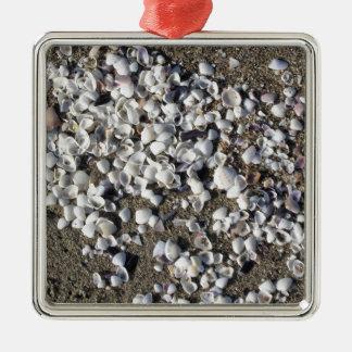 Ornement Carré Argenté Les coquillages l'été de sable échouent la vue