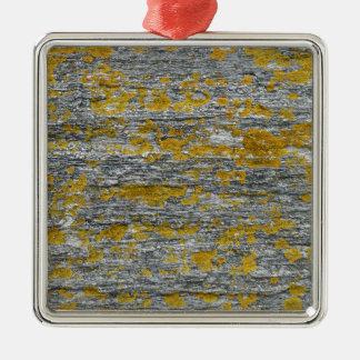 Ornement Carré Argenté Lichens sur pierre de granit