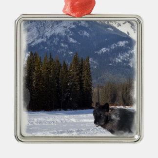 Ornement Carré Argenté Loup de Banff en hiver avec la cascade de Mt