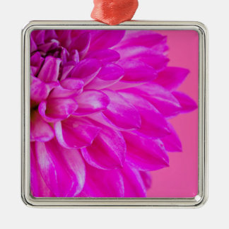 Ornement Carré Argenté Macro image du dahlia de fleur sur le backgroun