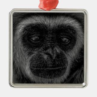 Ornement Carré Argenté Mammifère de l'Indonésie de faune de gibbon