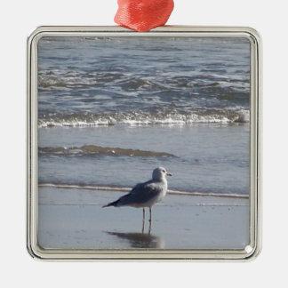 Ornement Carré Argenté Mouette sur la plage à marée basse sur la Côte Est