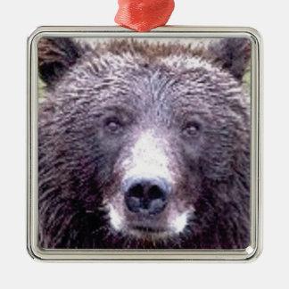 Ornement Carré Argenté museau principal noir d'ours