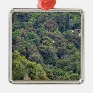 Ornement Carré Argenté Nature de collines vertes