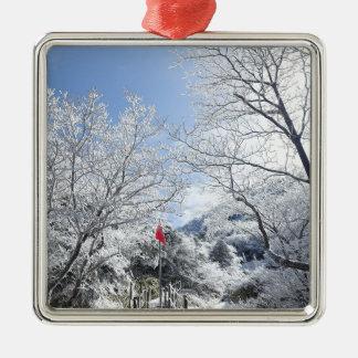 Ornement Carré Argenté Noël rural de paysage d'hiver