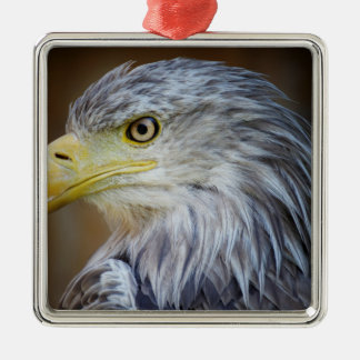 Ornement Carré Argenté Oiseau d'Eagle d'Américain