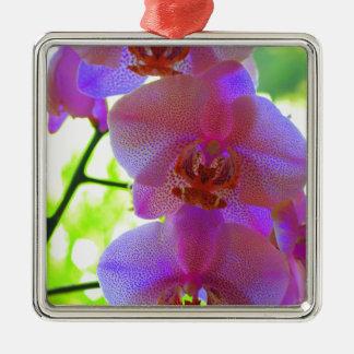 Ornement Carré Argenté Orchids