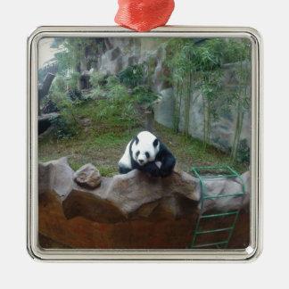 Ornement Carré Argenté Ours panda