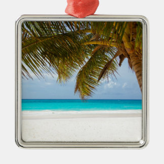 Ornement Carré Argenté Palmier vert sur la plage pendant la journée