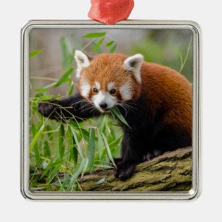 Ornement Carré Argenté Panda rouge mangeant la feuille verte