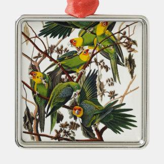 Ornement Carré Argenté Perroquet de la Caroline - John James Audubon